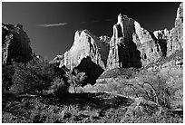 Court of the Patriarchs sandstone towers, morning. Zion National Park, Utah, USA. (black and white)