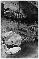 Boulders in  Third Emerald Pool. Zion National Park, Utah, USA. (black and white)