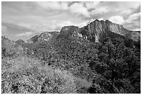 Finger canyons of the Kolob. Zion National Park ( black and white)