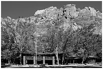 Zion lodge and cliffs. Zion National Park ( black and white)