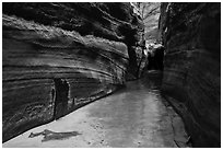 Narrow passageway, Upper Left Fork. Zion National Park ( black and white)