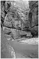 Bend of  Virgin Rivers in the Narrows. Zion National Park, Utah, USA. (black and white)