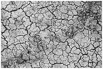 Rocks and mud cracks. Badlands National Park ( black and white)