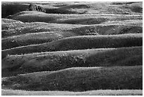 Grassy ridges, Badlands Wilderness. Badlands National Park ( black and white)