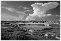 Stronghold Unit. Badlands National Park ( black and white)