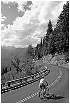 Bicyclists riding down Going-to-the-Sun road. Glacier National Park, Montana, USA. (black and white)