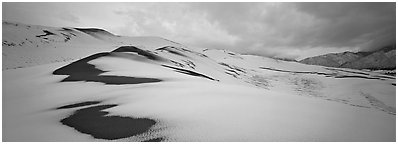 Dune field covered by snow. Great Sand Dunes National Park and Preserve (Panoramic black and white)