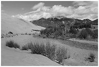 Dry Medano Creek. Great Sand Dunes National Park and Preserve ( black and white)