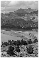 Sangre de Cristo mountains with aspen in fall foliage above dunes. Great Sand Dunes National Park and Preserve ( black and white)