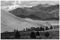 Sangre de Cristo range with bright patches of aspen above dunes. Great Sand Dunes National Park and Preserve ( black and white)