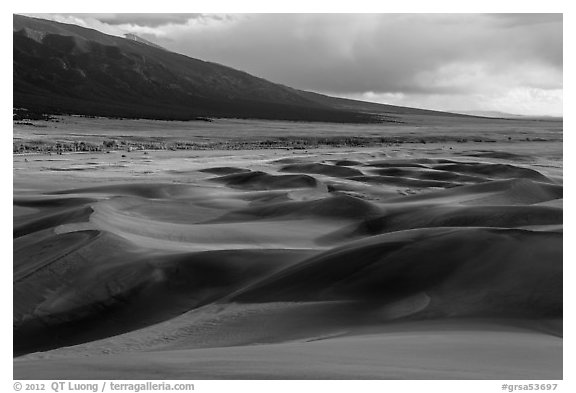 Dune field and valley, late afternoon. Great Sand Dunes National Park and Preserve (black and white)