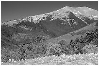 Sangre de Cristo Mountains near Medano Pass in summer. Great Sand Dunes National Park and Preserve ( black and white)