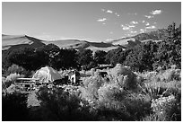 Pinyon Flats campground. Great Sand Dunes National Park and Preserve ( black and white)