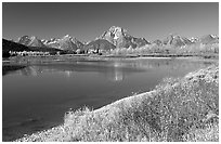 Fall colors and reflections of Mt Moran and Teton range in Oxbow bend. Grand Teton National Park ( black and white)