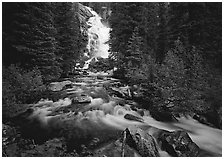 Hidden Falls, stream, and forest. Grand Teton National Park ( black and white)