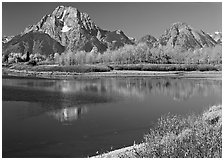 Mt Moran reflected in Oxbow bend in autumn. Grand Teton National Park, Wyoming, USA. (black and white)