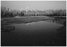 Teton range reflected in water at Schwabacher Landing, sunrise. Grand Teton National Park, Wyoming, USA. (black and white)