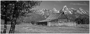 Rustic barn and Grand Teton range. Grand Teton National Park (Panoramic black and white)