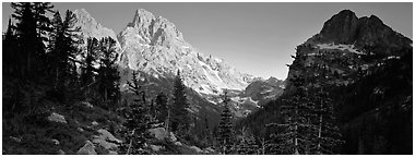 Grand Teton at sunset. Grand Teton National Park (Panoramic black and white)