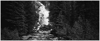 Waterfall flowing in dark forest. Grand Teton National Park (Panoramic black and white)