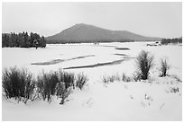 Oxbow Bend in winter. Grand Teton National Park, Wyoming, USA. (black and white)