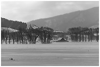 Moulton Homestead in the distance, winter. Grand Teton National Park ( black and white)