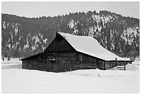 Thomas Alma and Lucille Moulton Homestead, winter. Grand Teton National Park ( black and white)