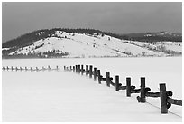 Fence, snowdrift and Ulh Hill. Grand Teton National Park, Wyoming, USA. (black and white)