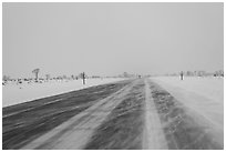 Road with snowdrift in winter. Grand Teton National Park, Wyoming, USA. (black and white)