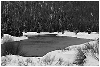 Snake River and forest covered hill in winter. Grand Teton National Park ( black and white)