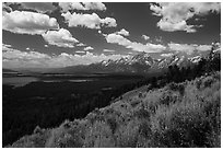 Jackson Hole plain and Tetons from Signal Mountain. Grand Teton National Park ( black and white)