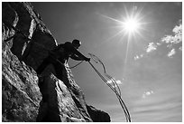 Climber throwing down ropes in preparation for rappel on Grand Teton. Grand Teton National Park ( black and white)