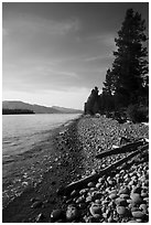 Driftwood on beach, Colter Bay. Grand Teton National Park ( black and white)