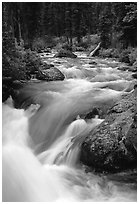 Cascade Creek flowing over rocks. Grand Teton National Park, Wyoming, USA. (black and white)