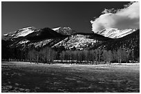 Aspens and mountains, West Horseshoe Park, winter. Rocky Mountain National Park, Colorado, USA. (black and white)