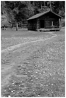 Meadow with flowers and historic cabin, Never Summer Ranch. Rocky Mountain National Park, Colorado, USA. (black and white)