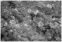 Close-up of red rocks with lichen. Theodore Roosevelt National Park, North Dakota, USA. (black and white)