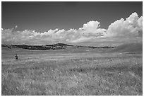 Park visitor looking, prairie and rolling hills. Wind Cave National Park, South Dakota, USA. (black and white)