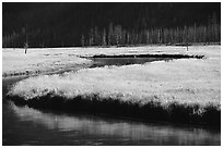 Yellowstone River and meadow in fall. Yellowstone National Park ( black and white)