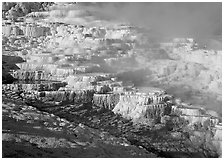 Minerva travertine terraces and steam, Mammoth Hot Springs. Yellowstone National Park ( black and white)