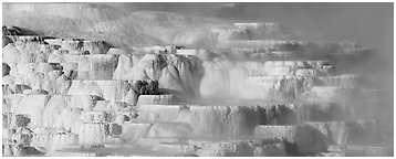 Travertine terraces and steam. Yellowstone National Park (Panoramic black and white)