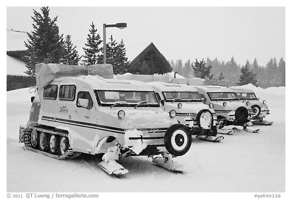 Snow coaches parked at Flagg Ranch. Yellowstone National Park, Wyoming, USA.