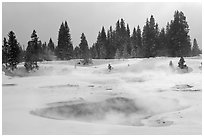 Steam rising from pool in winter, West Thumb. Yellowstone National Park, Wyoming, USA. (black and white)
