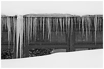 Icicles, Old Faithful Snow Lodge. Yellowstone National Park, Wyoming, USA. (black and white)