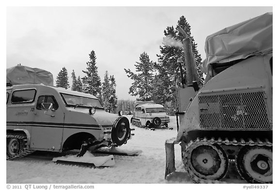 Bombardier snowcoaches. Yellowstone National Park, Wyoming, USA.