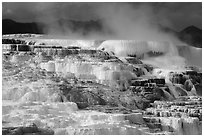 Active terraces at Canary Springs, steam, and mountains. Yellowstone National Park ( black and white)