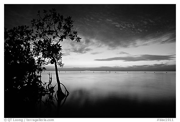 Sunset on Biscaye Bay from Elliott Key. Biscayne National Park (black and white)