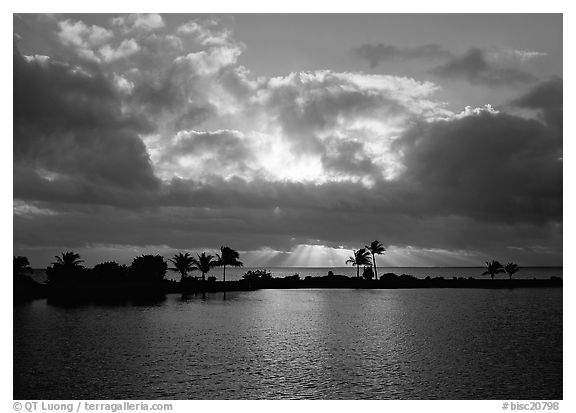 Sunrays and clouds at sunrise, Bayfront. Biscayne National Park (black and white)