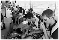 Snorklers getting ready on boat. Biscayne National Park, Florida, USA. (black and white)