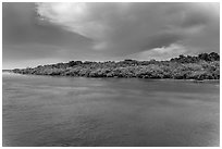 Adams Key, afternoon. Biscayne National Park ( black and white)